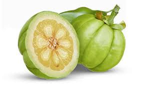 garcinia fruit---fat burners for women